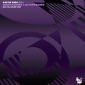 Gebrochener Lautsprecher by Austin Reed