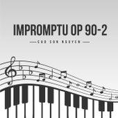 Impromptu Op 90-2 by Cao Son Nguyen