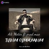Benim Olmayanım by ALİ METİN