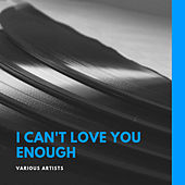 I Can't Love You Enough von Various Artists