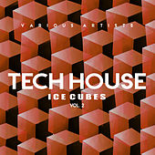 Tech House Ice Cubes, Vol. 2 - EP by Various Artists