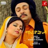 Mirza von A.S. Tari