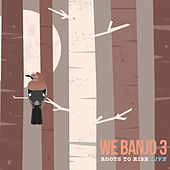Roots to Rise (Live) by We Banjo 3