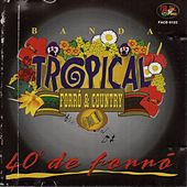 40 Graus de Forró de Banda Tropical