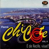 É de Recife, Visse !?, Vol. 2 by Forró Chicote