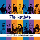 Vol. 5: What Did We Do Wrong? von Institute