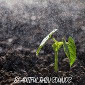 Beautiful Rain Sounds by Relaxing Rain Sounds