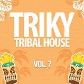 Triky Tribal House, Vol. 7 de Various Artists