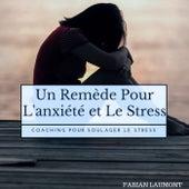Un remède pour l'anxiété et le stress (Coaching pour soulager le Stress) von Fabian Laumont