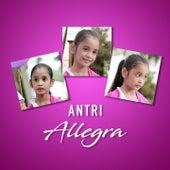 Antri by Allegra