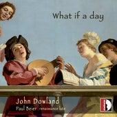 What if a Day de Paul Beier