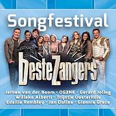 Beste Zangers Songfestival de Various Artists