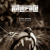Käsi iskee by Paleface