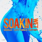 Soakin Wet by Marlo