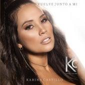 Vuelve Junto a Mi de Karina Castillo