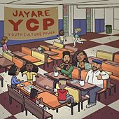 Youth Culture Power de J Rawls