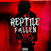 Fallen de Reptile