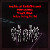 Ruler of Everything (Mikey Parkay Remix) by Tally Hall