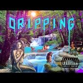 Dripping by Yung Li