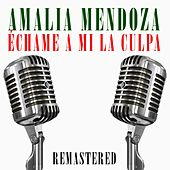 Échame a mi la culpa by Amalia Mendoza