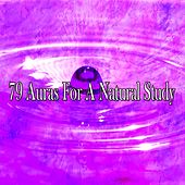 79 Auras for a Natural Study by Massage Tribe
