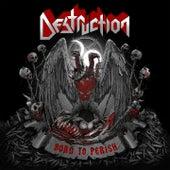 Born to Perish by Destruction