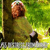 55 Destress from Exams de Study Concentration