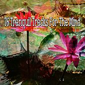 76 Tranquil Tracks for the Mind von Massage Therapy Music