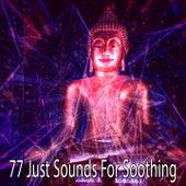 77 Just Sounds for Soothing de Meditation Spa