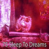 75 Sleep to Dreams by Ocean Sounds Collection (1)