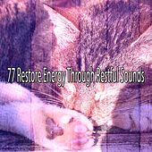 77 Restore Energy Through Restful Sounds by Calming Sounds