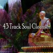 43 Track Soul Cleanser de Yoga Tribe