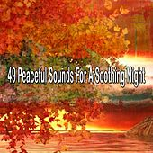 49 Peaceful Sounds for a Soothing Night de Einstein Baby Lullaby Academy