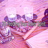 76 Feeding Your Inner Spirit de Nature Sounds Artists