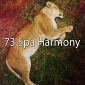 73 Spa Harmony de Sleepicious