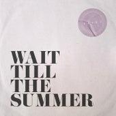 Wait Till The Summer by Origo