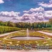 56 Natural Reiki Healing de Zen Music Garden