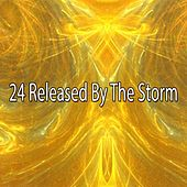 24 Released by the Storm by Rain Sounds (2)