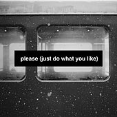 Please (Just Do What You Like) von The Hunt Saboteurs