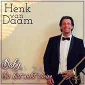 Baby Du bist nicht alleine (Steve McVine Remix) von Henk Van Daam