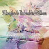 24 Strengthen the Weakened Mind with Storms de Thunderstorm Sleep
