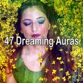 47 Dreaming Auras by Einstein Baby Lullaby Academy