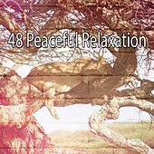 48 Peaceful Relaxation de Lullaby Land