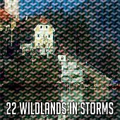 22 Wildlands in Storms by Rain Sounds (2)