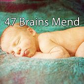 47 Brains Mend by Sounds Of Nature