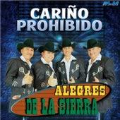 Cariño Prohibido by Los Alegres De La Sierra