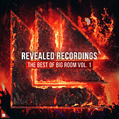 Revealed Recordings presents The Best of Big Room Vol. 1 by Various Artists