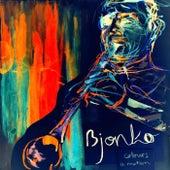 Colours in Motion by Bjonko