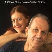 A Olhos Nus: Novela Velho Chico de Zé Miguel Wisnik