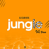 Jungle, Vol. 3 de DJ Clon 876